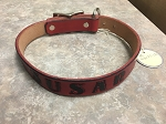 SUSAR - Red Dog Collar